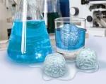 خرید پستی  قالب یخ شبیه مغز انسان