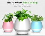 خرید پستی  گلدان موزیکال هوشمند